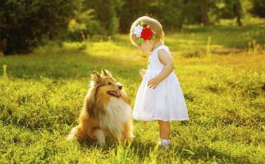 顽童情绪难料?家里可以养只宠物狗