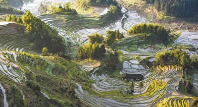 农业文化遗产具有非同寻常的意义
