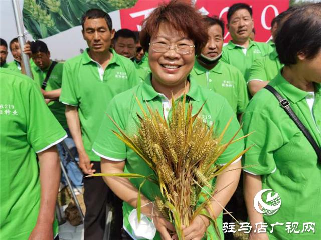 小麦要高产 良种是首选 ——吨源种业2020年小麦高产示范启动会