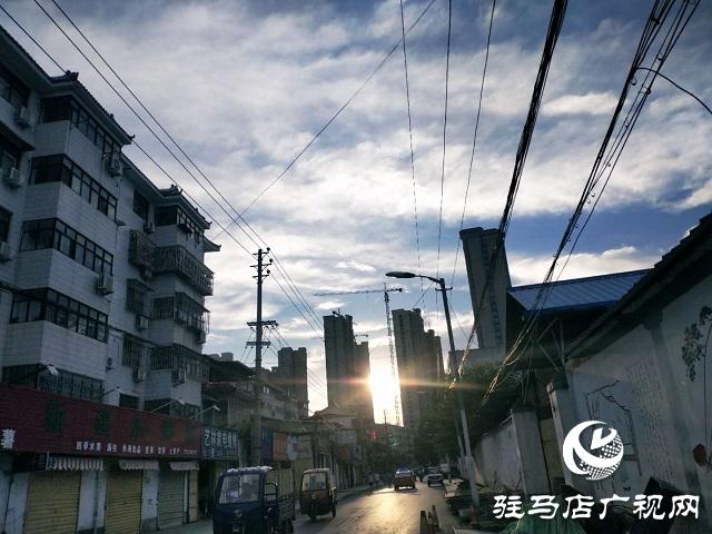 驻马店:蓝天白云景无限 绿树阴浓夏日长