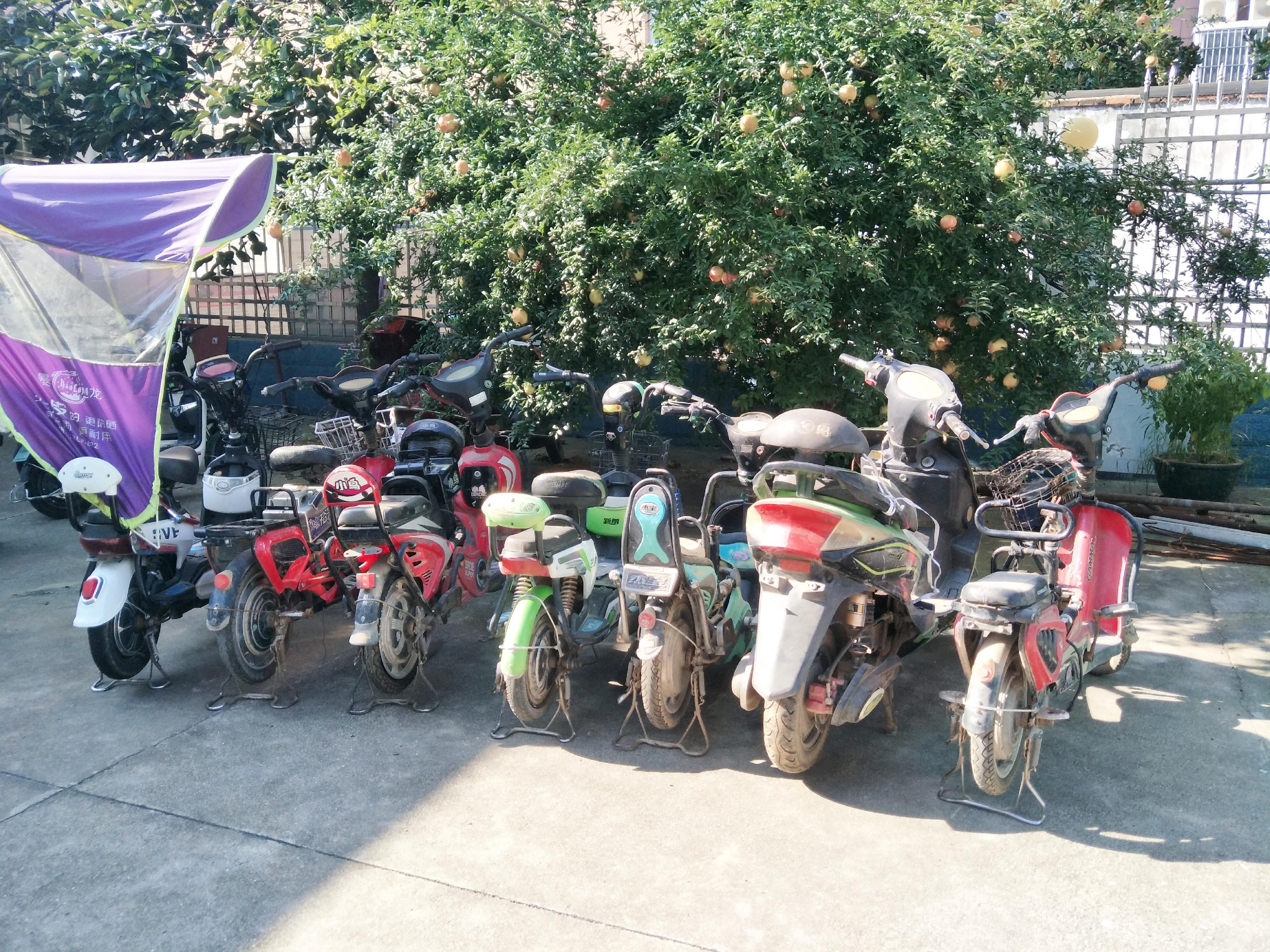 西平县民警:走访中认出盗窃嫌疑人 带破系列电动车盗窃案