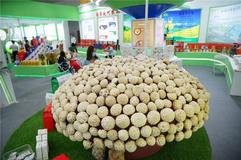 第二十三届中国农产品加工业投资贸易洽谈会掠影
