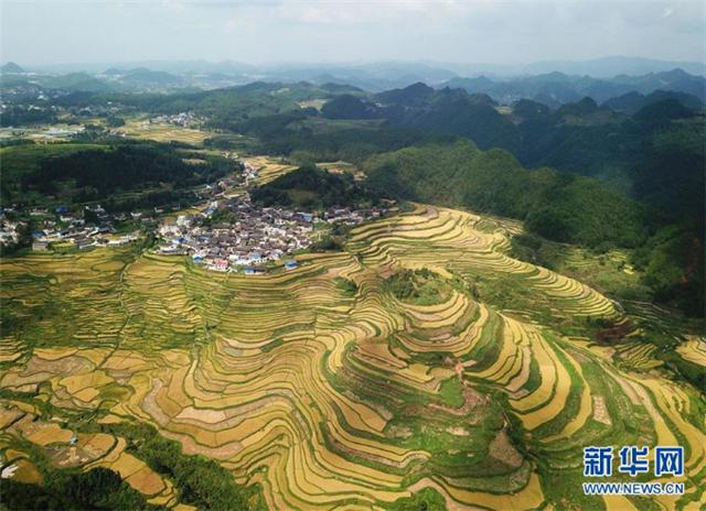 """一个小镇""""撬动""""整县脱贫——社会扶贫的贵州丹寨样板"""