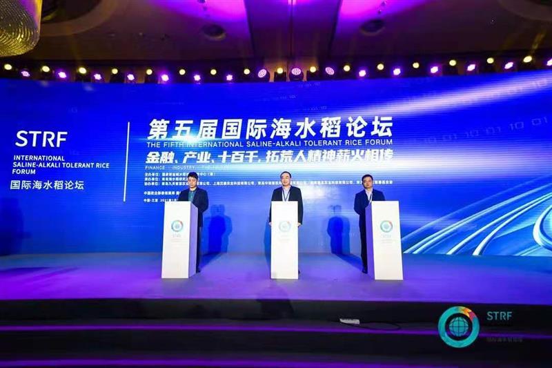 袁隆平:2021年示范推广100万亩海水稻种植