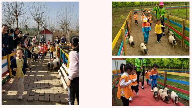 精心组织,周密部署,2021年春节世外桃源教育农场迎来开门红!