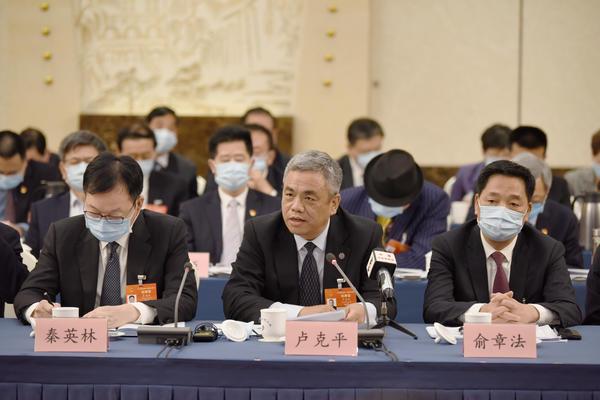 【大河网景】河南代表团举行全体会议审议政府工作报告