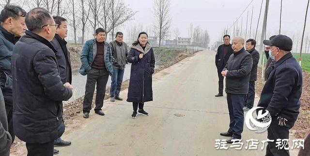 新蔡县委常委王霞到杨庄户乡进行植树造林观摩工作