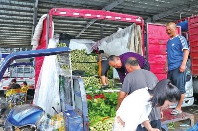 """防汛救灾进行时·人民至上 蔬菜货源充足,价格正常暴雨后的""""菜篮子""""被托得很稳"""