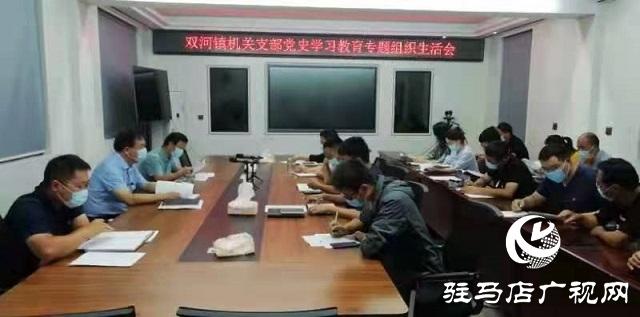 确山县双河镇召开党史学习教育专题组织生活会
