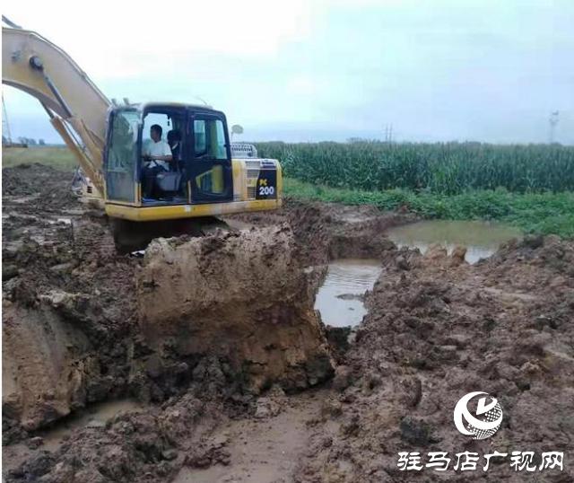 雨水倒灌庄稼地 紧急排涝解民忧