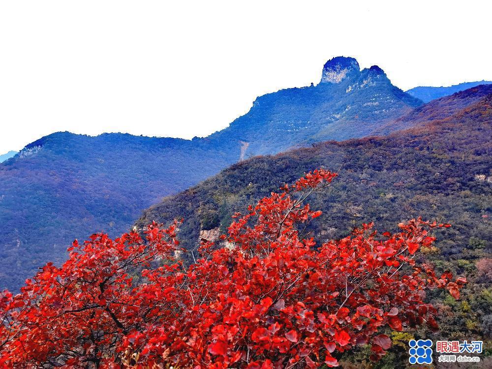 春意阑珊绿未减 山间十月秋色满