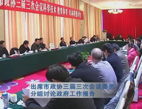 武国定出席市政协三届三次会议委员分组讨论政府工作报告