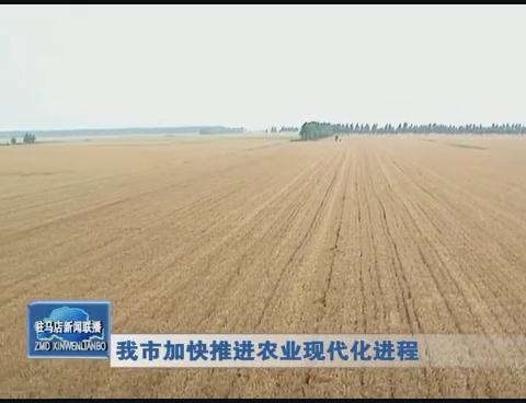 我市加快推进农业现代化进程
