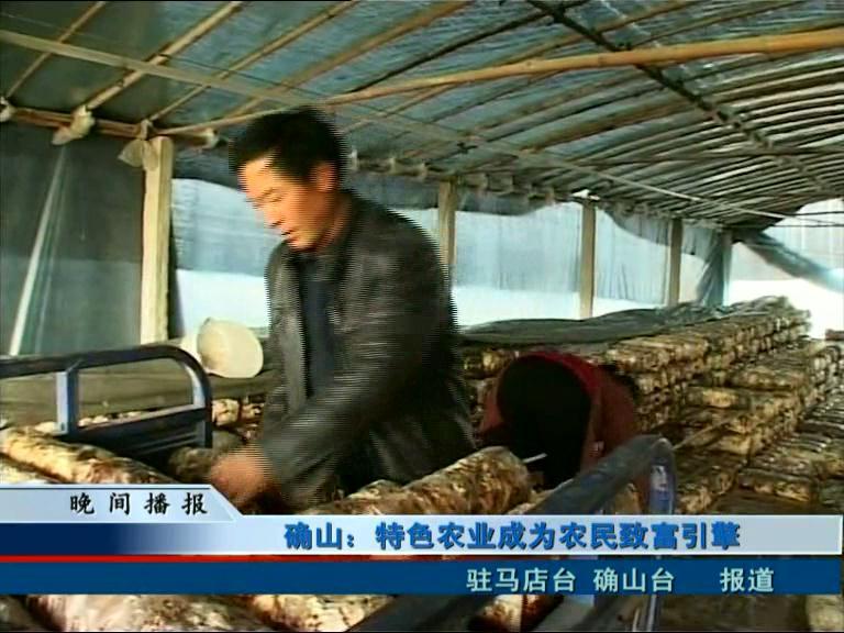 确山:特色农业成为农民致富引擎
