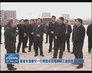 副省长张维宁一行到我市实地调研工业经济运行状况