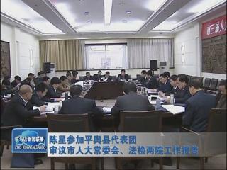 陈星参加平舆代表团审议市人大常委会、法检两院工作报