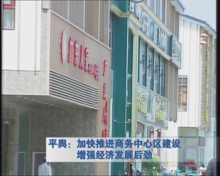 平舆:加快推进商务中心区建设增强经济发展后劲