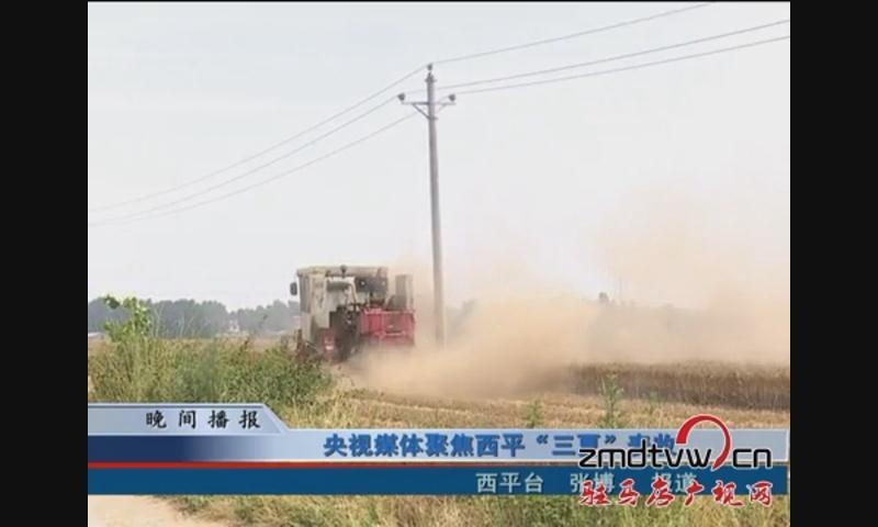 """央视媒体聚焦西平""""三夏""""麦收"""