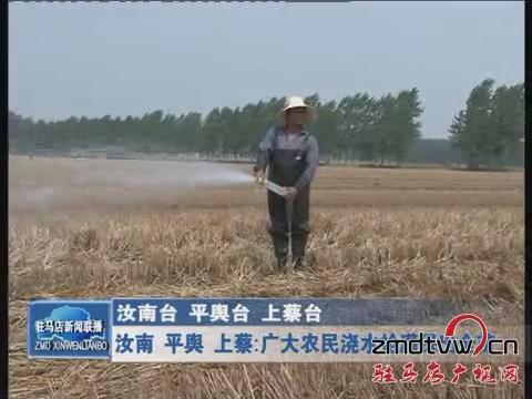 汝南 平舆 上蔡:广大农民浇水抢灌保出苗