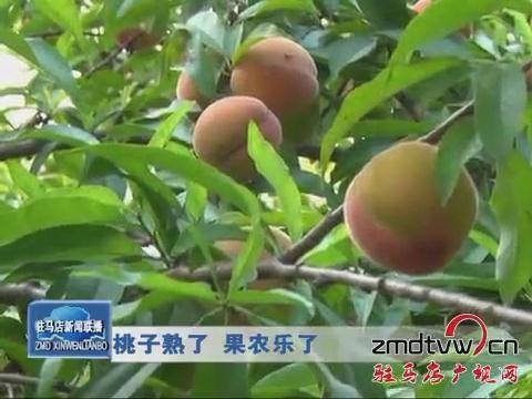 桃子熟了 果农乐了