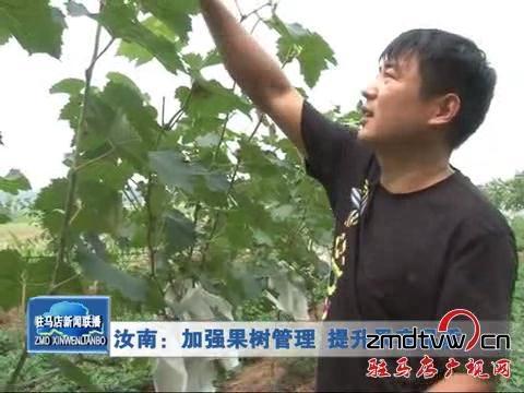 加强果木管理 提高葡萄产量