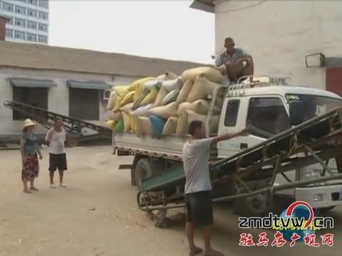 汝南:农民喜售丰收粮