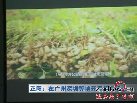正阳:在广州深圳等地开展招商活动