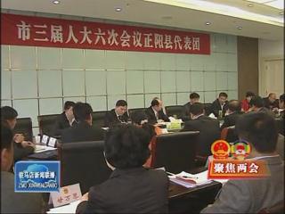 余学友参加正阳县代表团审议政府工作报告(视频)