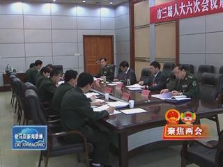 余学友参加解放军代表团和遂平县代表团审议(视频)