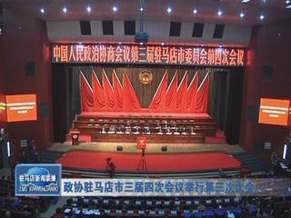 政协驻马店市三届四次会议举行第三次会议(视频)